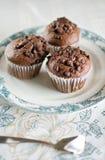 Orientalna herbata z czekoladowymi muffins Zdjęcie Royalty Free