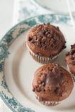 Orientalna herbata z czekoladowymi muffins Obrazy Royalty Free