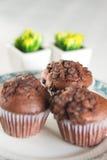 Orientalna herbata z czekoladowymi muffins Obraz Stock