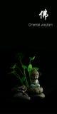 Orientalna mądrość Buddha Fotografia Stock