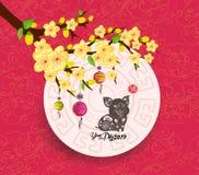Orientalny Chiński nowego roku 2019 lampionu i okwitnięcia tło Rok Świniowata hieroglif świnia ilustracja wektor