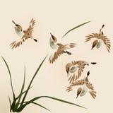 orientalny obrazu wróbli styl Zdjęcia Stock