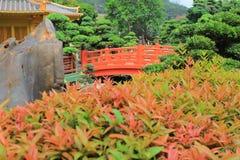 Orientalny złoty pawilon Chi Lin Nunnery i chińczyk uprawiamy ogródek, Zdjęcia Royalty Free
