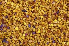 Orientation sélectrice de texture de pollen Photo libre de droits