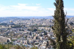 Oriente Medio, Palestina, Jerusalén, Israel, la santo Fotografía de archivo