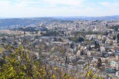 Oriente Medio, Palestina, Jerusalén, Israel, la santo Imagen de archivo libre de regalías