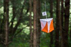 Orienteering旗子 免版税库存图片