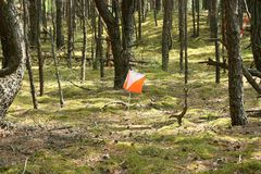 Orienteering标志特写镜头  免版税库存图片