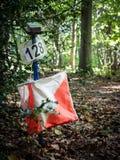 Orienteering设备在森林里 免版税库存照片