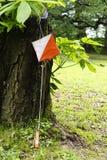 Orienteering Royalty-vrije Stock Foto