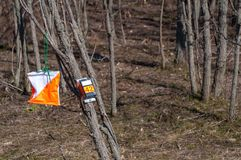 Orienteering. Check point Prism and electronic composter for orienteering close-up. Navigation equipment. The concept.  stock images