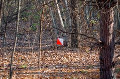 Orienteering. Check point Prism for orienteering. Navigation equipment. The concept royalty free stock images