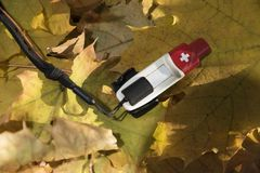 Orienteering Chip Autumn Leaves Electronic Chip Orientation North Reading Track Route Control Point. Navigation Sport Activity Selective focus Royalty Free Stock Images
