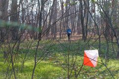 Orienteering competitions in wooded areas. The athlete is approaching the checkpoint.  stock photo