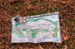 orienteering Contornee y trace para la mentira orienteering del deporte en el bosque en una aguja caida del otoño El concepto Imagen de archivo