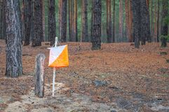 Orienteering. Control point Prism and composter for orienteering in the autumn forest.  royalty free stock photography