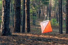 Orienteering. Control point Prism and composter for orienteering in the autumn forest. The concept. Orienteering. Control point Prism and composter for royalty free stock images