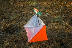 Orienteering. Control point Prism and composter for orienteering in the autumn forest. The concept.  stock photos