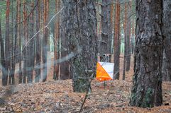 Orienteering. Control point Prism and composter for orienteering in the autumn forest. The concept.  royalty free stock photos