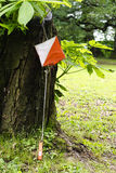 Orienteering Royalty Free Stock Photo