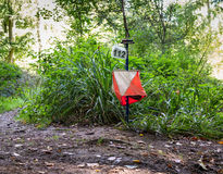 Orienteering Equipment in the Forest Royalty Free Stock Photo