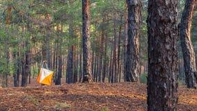 orienteering Prisma e composter do ponto de controle para orienteering na floresta do outono imagens de stock royalty free