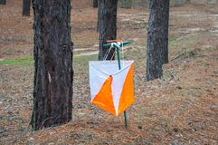 orienteering Prisma e composter do ponto de controle para orienteering na floresta do outono imagem de stock
