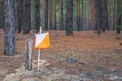 orienteering Prisma e composter do ponto de controle para orienteering na floresta do outono fotografia de stock royalty free