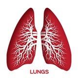 Origâmi dos pulmões Vermelho Foto de Stock Royalty Free