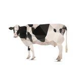 origami母牛的例证 免版税库存照片