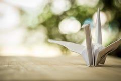 Origami żuraw, papierowy ptak i bokeh tło, płycizna głęboko obraz stock