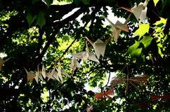 Origami Стоковые Фотографии RF