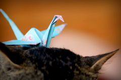 Origami Стоковое Изображение RF
