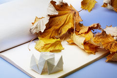 Origami and autumn leaves Stock Photography