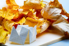 Origami and autumn leaves Stock Photos