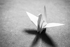 Origami Bird Royalty Free Stock Photos