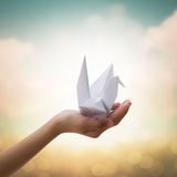 Origami bird on children's hand Royalty Free Stock Photography