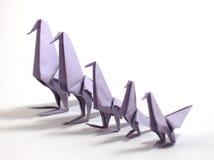 Origami bird Stock Photos