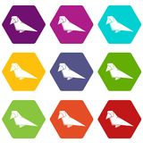 Origami bird icons set 9 vector. Origami bird icons 9 set coloful isolated on white for web stock illustration