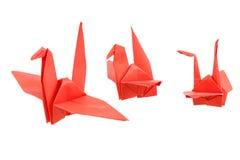 Origami Bird isolated on white background. Origami Bird isolated and white background stock image