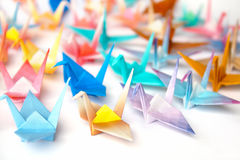 Origami birds. A group of origami birds Royalty Free Stock Photo