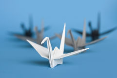 Origami birds. A group of five origami birds forming a v pattern royalty free stock image