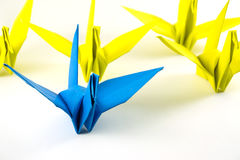 Origami birds demonstrate think different concept. Bird paper folding Stock Image