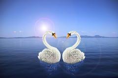 Origami blanc de cygnes dans l'amour sur la mer Photographie stock libre de droits