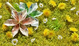 Origami Blossoms on Moss stock images