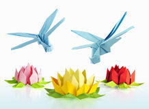 Origami blue dragonfly and lotus Royalty Free Stock Images
