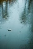 Origami boat on wet asphalt during rain Royalty Free Stock Photography