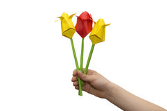 Origami colored paper tulip bouquet in child hand on white backg Royalty Free Stock Images