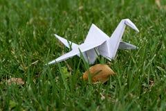 Origami crane in grass nature setting Stock Photo