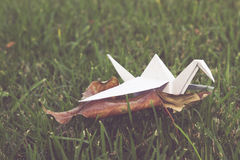 Origami crane in grass nature setting Stock Photography